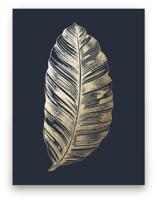 Leaf Study 2 by annie clark