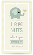 Nutty Elephant