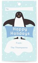 Presents from Penguins by Jennifer Holbrook
