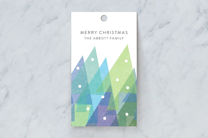 """Wintertide"" - Modern, Whimsical & Funny Gift Tags in Frost by Fig and Cotton."