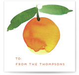 This is a orange gift tag by Alexandra Dzh called Sweet oranges printing on signature.
