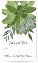 This is a green gift tag by Susan Moyal called Wrapped in Succulents printing on signature.