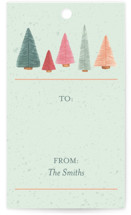 This is a green gift tag by Janet Hirata Stall called Bottle Brush Forest printing on signature.