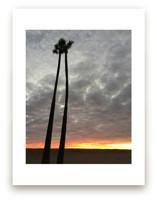 Twin Palms by Leah Lenz