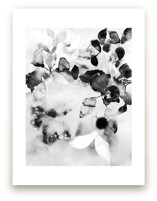 Flora in B+W by Marta Spendowska