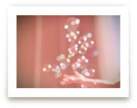 Magic Bubbles by Shannon Paras