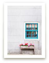 A Little Window
