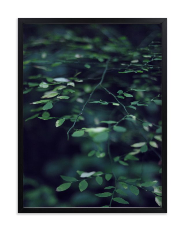 """Forest Focus"" - Limited Edition Art Print by Satpreet K in beautiful frame options and a variety of sizes."