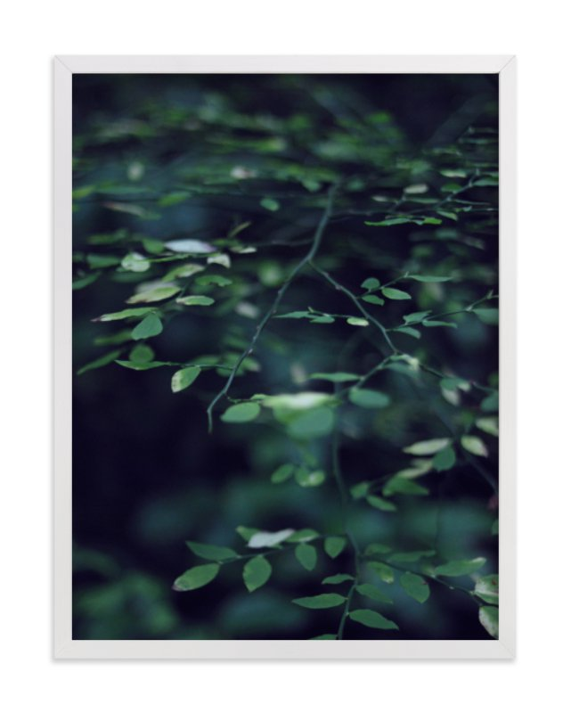 Forest Focus Art Print