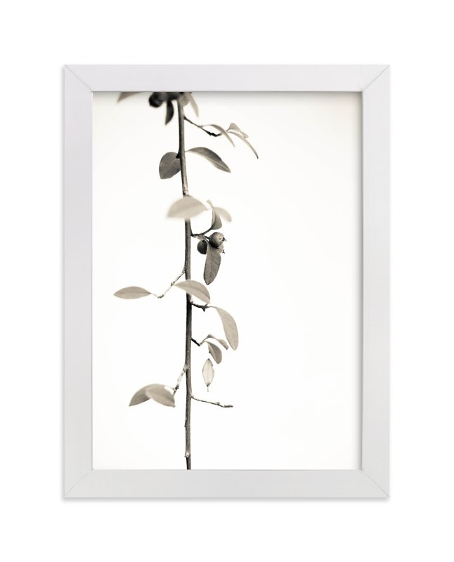 """""""Berry branch"""" - Limited Edition Art Print by Sharon O. in beautiful frame options and a variety of sizes."""