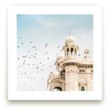 Fly Away Palace by Kamala Nahas