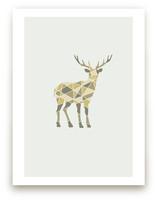 Deer Geometry