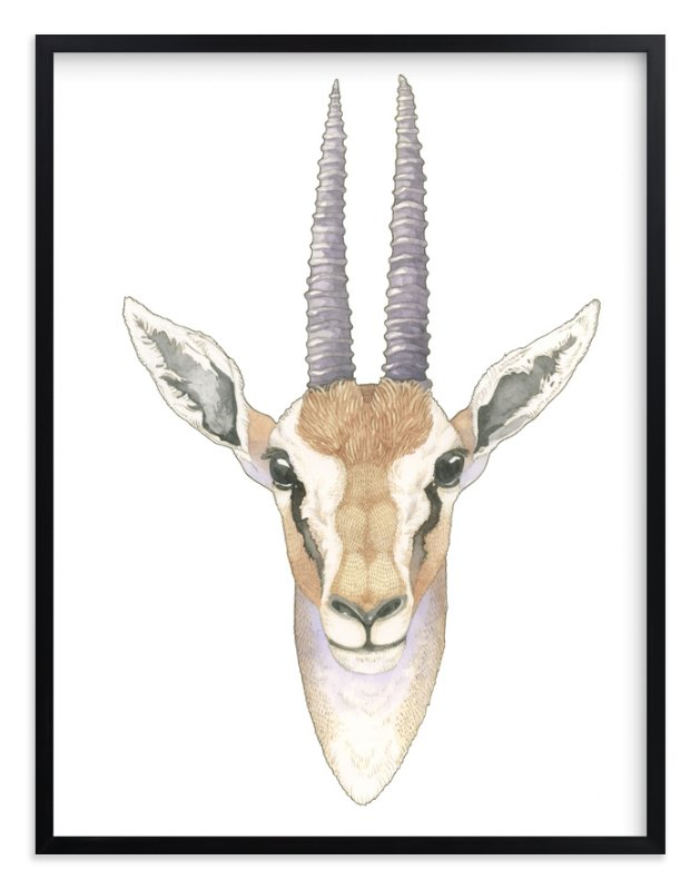 """""""African Gazelle"""" - Limited Edition Art Print by Natalie Groves in beautiful frame options and a variety of sizes."""