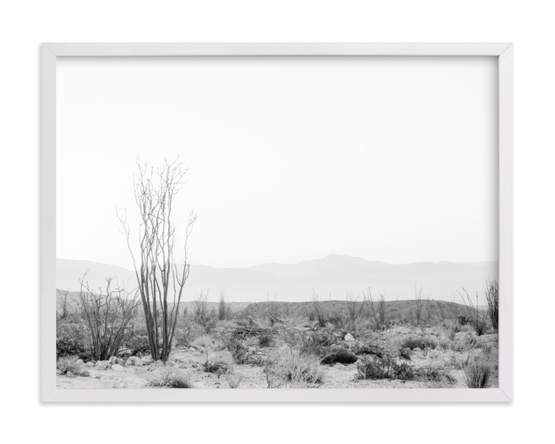 This is a black and white art by Kamala Nahas called Ocotillo II.