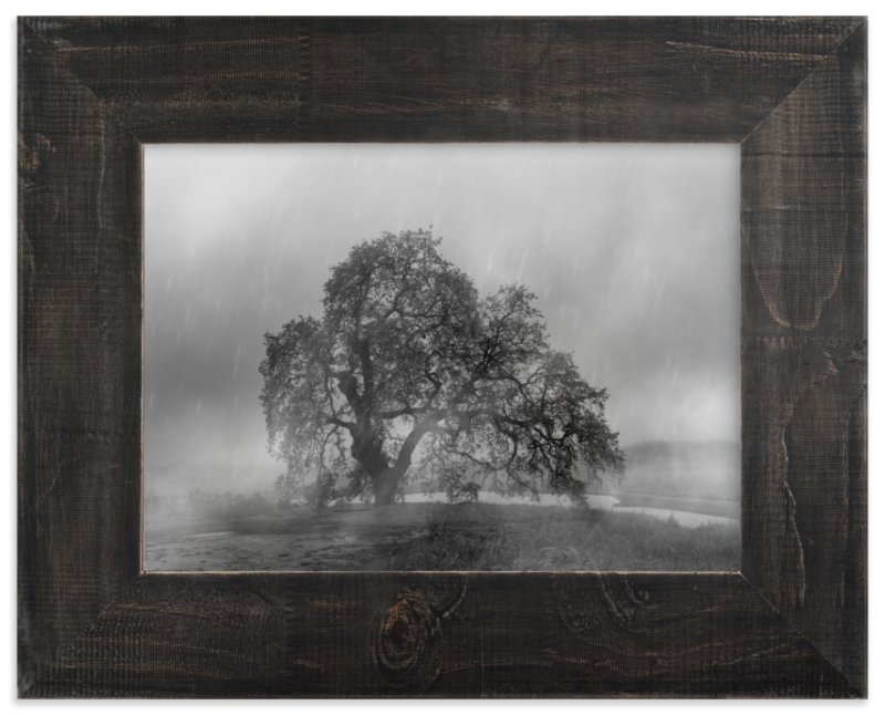 e46689b2f13ea in the rain Wall Art Prints by Crystal Lynn Collins | Minted