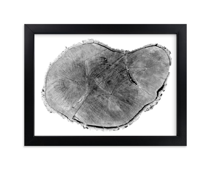 """""""Tree Rings pt. 1"""" - Limited Edition Art Print by Mackenzie Darrach in beautiful frame options and a variety of sizes."""
