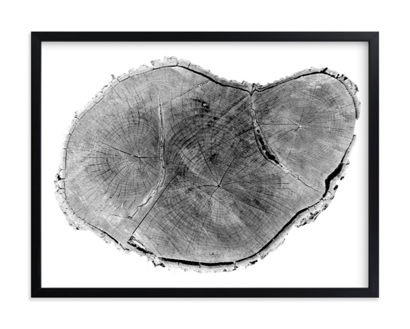 """Tree Rings pt. 1"" - Limited Edition Art Print by Mackenzie Darrach in beautiful frame options and a variety of sizes."