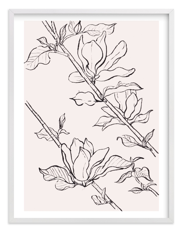 """""""magnolia study"""" - Limited Edition Art Print by Qing Ji in beautiful frame options and a variety of sizes."""