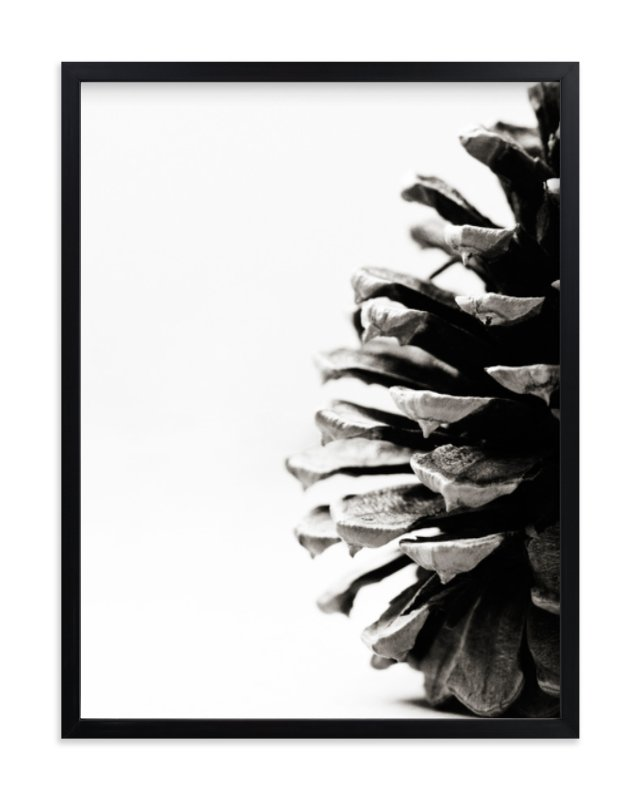 """""""Pine Cone"""" - Limited Edition Art Print by Alexis Arnold in beautiful frame options and a variety of sizes."""