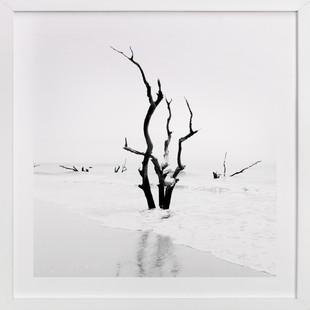 Boneyard Beach Art Print