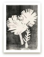Paper Flowers 2