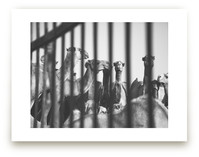 Behind Bars by Heather Marie