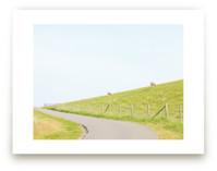 A Woolly Path