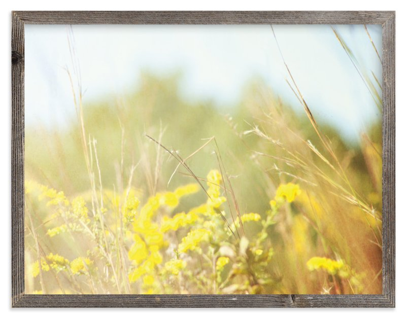 """""""Field of Sunshine"""" - Limited Edition Art Print by Smile Peace Love in beautiful frame options and a variety of sizes."""