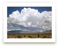 desert drive by