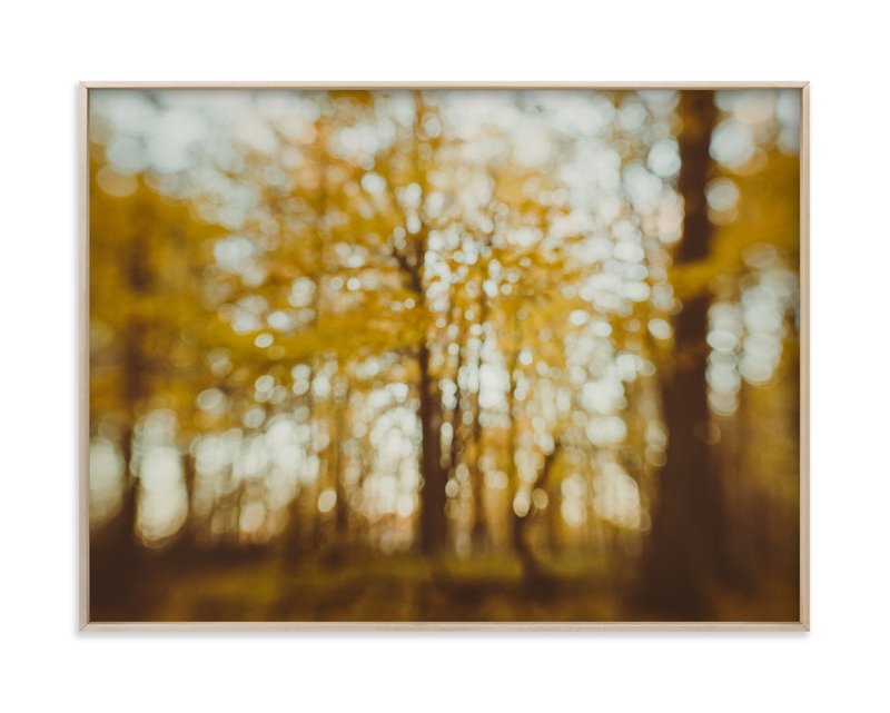 """Golden Canopy Study #2"" - Limited Edition Art Print by Stacy Kron in beautiful frame options and a variety of sizes."