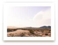Desert Road by Alexandra Nazari