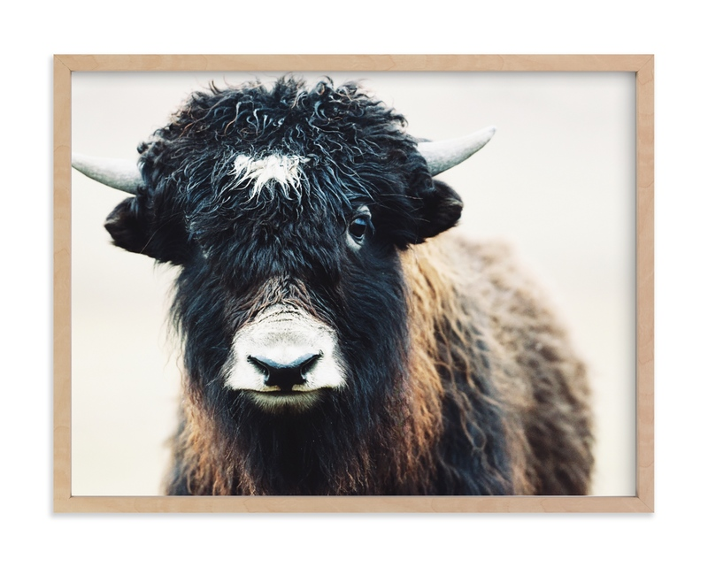 """Thomas Bangs"" - Limited Edition Art Print by Amy Carroll in beautiful frame options and a variety of sizes."