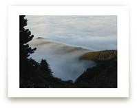 Deer Point Fog