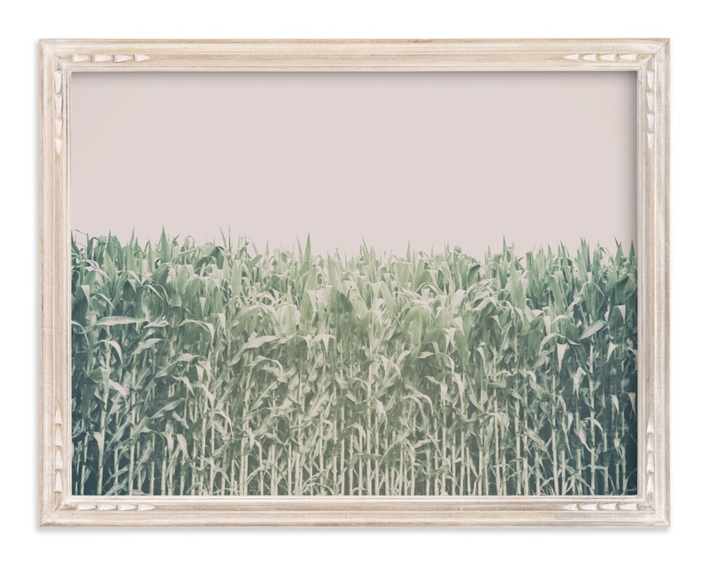 """""""Corn Field"""" - Limited Edition Art Print by Alexis Arnold in beautiful frame options and a variety of sizes."""