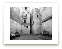Oasis by Land Collioure Le Coq
