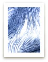 Fine Feathered I by Debra Pruskowski