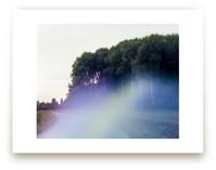 Forest (Sollentuna, Swe... by Tommy Kwak