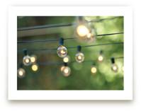String of Lights by L. Daniel