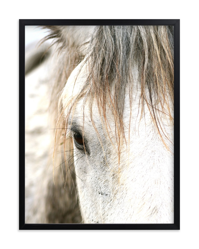 """Wild Horse Eye"" - Limited Edition Art Print by Michelle Detering in beautiful frame options and a variety of sizes."