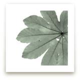 Leaf In Green