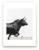 toro by Keely Norton Owendoff