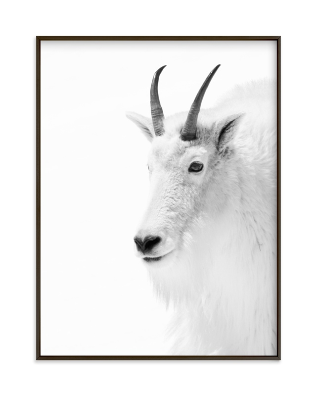 """""""Fierce"""" - Limited Edition Art Print by Jamie Lollback in beautiful frame options and a variety of sizes."""