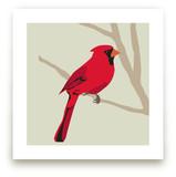 Cardinal by Faye Femister