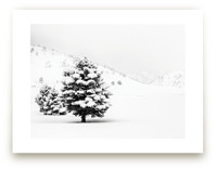Tranquil Snow II by Gabrial Reising