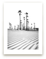 Lines in the Sand by Kamala Nahas