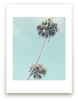 Palms for Days by Shannon Howard