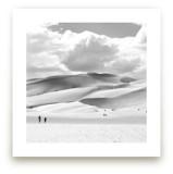 Dunes by Calais Le Coq