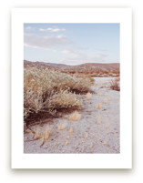 Desert Hot Springs Study 4