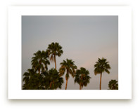 Fancy Palms by CaroleeXpressions