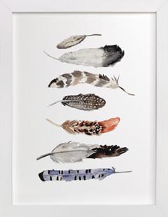 Feather Print Art Print